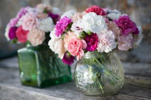 Jars of Scented Pinks