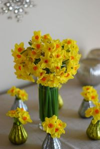 Our Christmas narcissi make beautiful table decorations